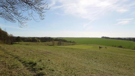 Therfield Heath, which is owned by the Therfield Regulation Trust and managed by the Conservators of