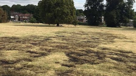 The aftermath of the fire on Harpenden Common. Picture: Steve Clayton.