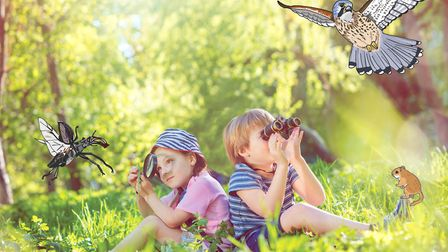 Nature Detectives. Picture: Woodland Trust