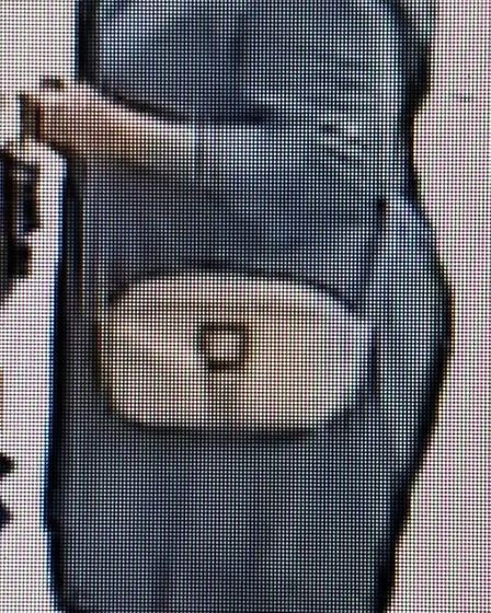 Police would like to speak to this woman in connection with a purse theft in Smallford. Picture: Her