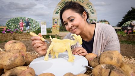 Willows Activity Farm recreates the famous Picasso 'Capra' sculpture made out of Picasso potatoes