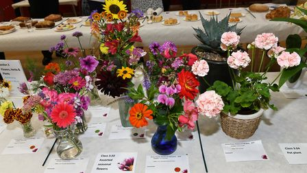 The St Ives Town Show took place at the corn exchange. Picture: ARCHANT