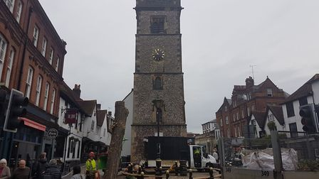 A photo of the tree outside St Albans Clock Tower taken on Wednesday.
