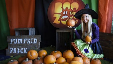 Halloween event at Whipsnade Zoo. Picture: Tony Margiocchi