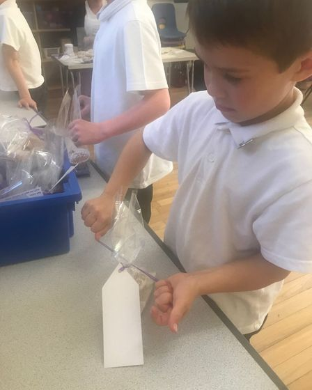 Time for wrapping: Jonathan Atkins, Year 1. Picture: Therfield First School