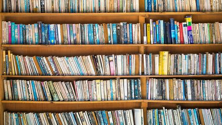 Books lining a set of shelves. Picture: mazzzur