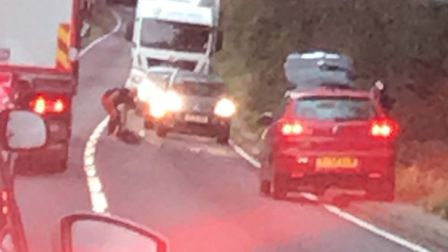 A deer was hit on the A10 between Royston and Buntingford yesterday evening. Picture: Pete Bishop