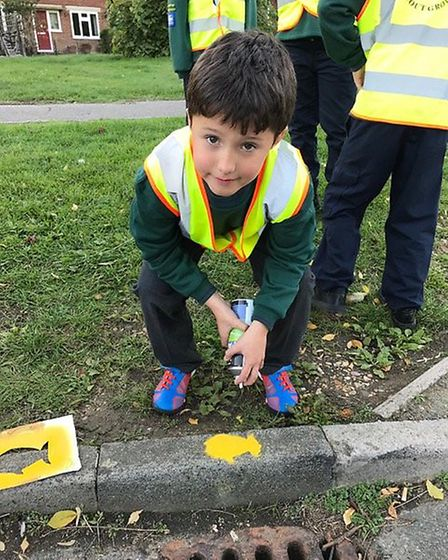 The First Park Street cubs painted Yellow Fish onto kerbs around St Albans for the Environment Agenc