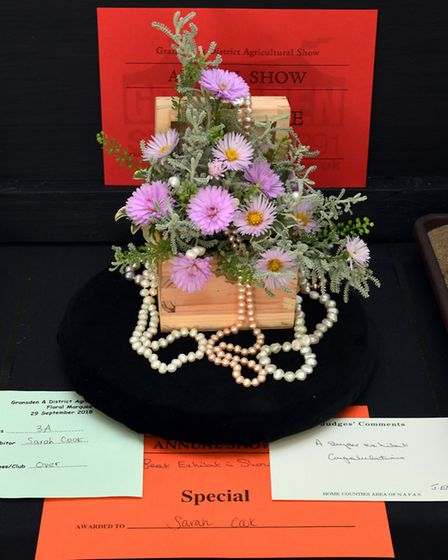 The Gransden and District Agricultural Society Show 2018. Picture: ARCHANT