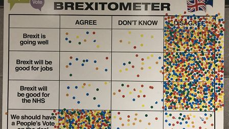 Remain group conduct street polls for People's Vote National Day of Action. The Brexitometer in St A