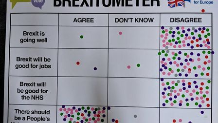 Remain group conduct street polls for People's Vote National Day of Action. The Brexitometer in Harp