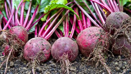 You can't beat a bit of beetroot. Picture: Thinkstock/PA.