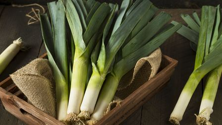 Leeks can be sown in spring and harvested from September onwards, right through autumn, winter and e