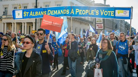 St Albans and Harpenden Remainers took part in the People's Vote march in London at the weekend. Pic