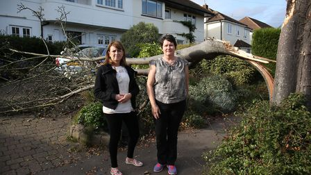 (L-R) Charmouth Road residents Anne O'Reilly and Gill Owen next to the fallen tree outside Gill Owen