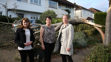 (L-R) Charmouth Road residents Anne O'Reilly and Gill Owen with cllr Helen Campbell next to the fall