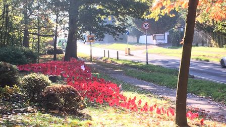 Radlett Rainbows, Brownies and Guides put up Remembrance Day poppies in Watling Street. Picture: Cli