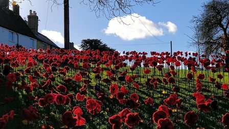 Abbotsley came together to plant the 2,018 knitted and crocheted poppies on its village green