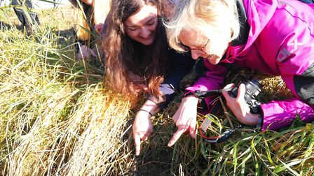 Ecologists visit Madeleine''s Patch Nature Reserve