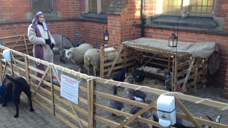 The animals of Ark Farm will be appearing at a Christmas event at Dagnall Street Church in St Albans
