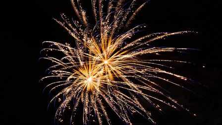 One of the fireworks at the London Colney fireworks show at Morris Playing Fields. Picture: Ian Cald