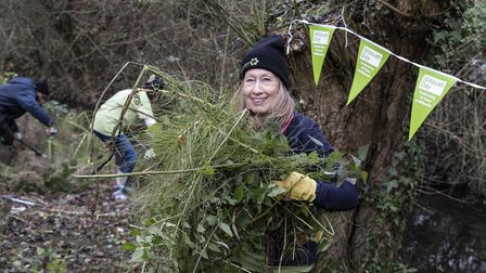 Volunteer Lesley from St Albans United Synagogue helps clear up the River Ver for Mitzvah Day. Pictu