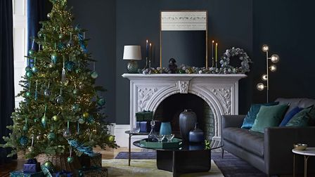 Go Green: Peruvian pine tree, 7ft, £199; Willow Tree Skirt XL Natural, from £28 to £35; Frosted Succ
