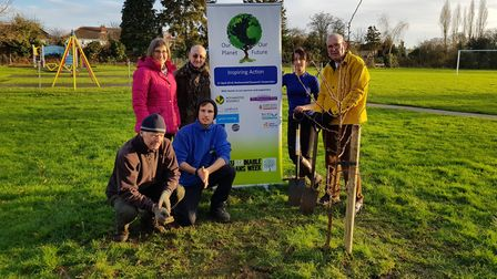 A crab apple tree, donated by Ayletts, is planted in Sandridge as part of the Our Planet Our Future