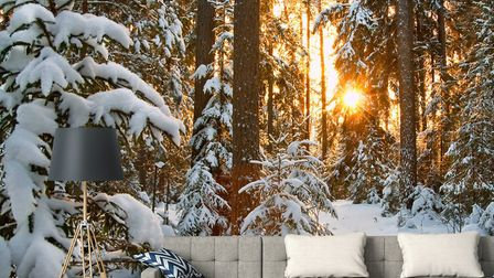 Wow With Wallpaper: Winter Wonderland Wall Mural, from £27 a square metre, Wallsauce. Picture: Walls