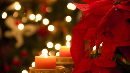The poinsettia has become a Christmas classic in many UK homes. Picture: Thinkstock/PA