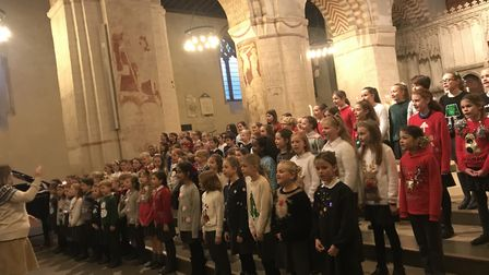 The Hospice of St Francis Christmas carol concert at St Albans Cathedral. Picture: Stacey Turner