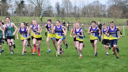 The start of the U15 race at the Herts Cross Country Championships in Verulamium Park had St Albans
