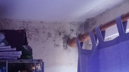 Mould on the walls in the St Albans council house. Picture: Natalie Jones