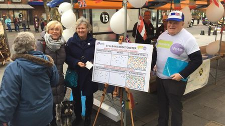 Members of St Albans for Europe held an action day in the city centre.