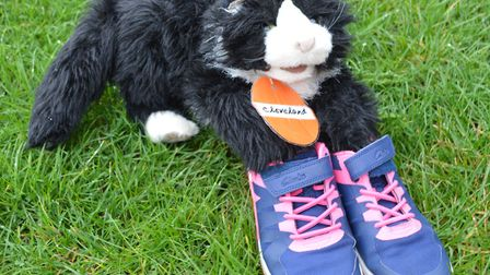 Herts Young Carers mascot Cleveland the cat promoting the walk a mile campagin. Picture: Carers in H
