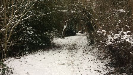 Snow along the path of Bentsley Spinney, which is a small green in Marshalswick. Picture: Archant