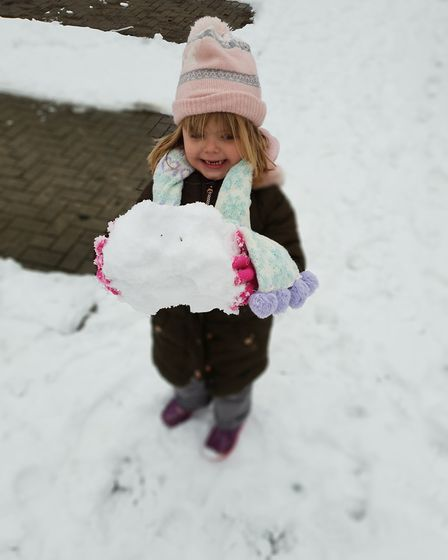 Three-year-old Eliza Snell having fun in Bricket Wood. Picture: Donna Louise OLeary