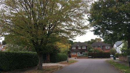 There are plenty of £1million-plus properties on St Albans' Homewood Road (seen at the end of the ro