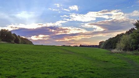 Kinsbourne Green at sunset. Picture: Archant