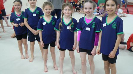 The Crosshall Junior School team who came second in the 'A' competition. Picture: SUBMITTED