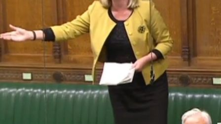 St Albans MP Anne Main speaking in the House of Commons.