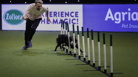 Agility Championship Final Large winner Dan Shaw and Geek on Sunday March 10, the fourth and final