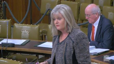 St Albans MP Anne Main in a pervious debate about business rates for St Albans pubs.