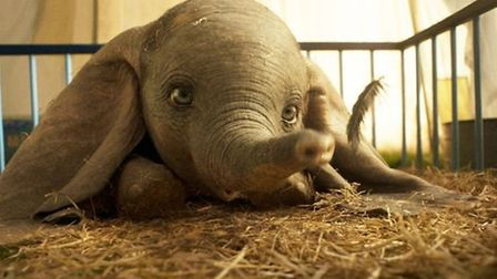 Dumbo (PG) is out in cinemas now