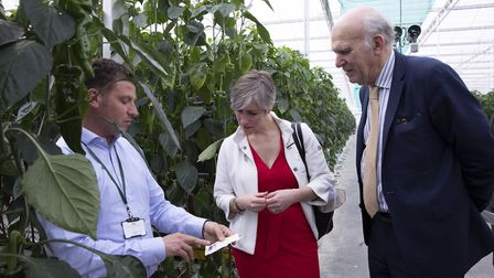 Liberal Democrat party leader Sir Vince Cable visiting St Albans' Glinwell Marketing on Hatfield Roa