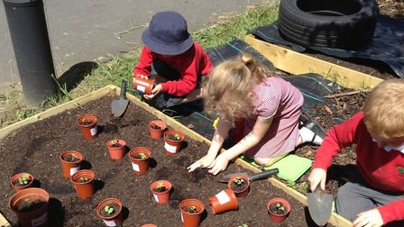 Hertfordshire Gardens Trust worked with Tanners Wood School and their enthusiastic early years teach