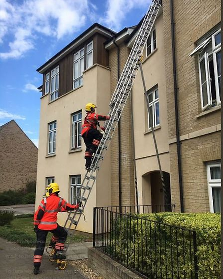 Crews arrived to find a dove trapped in netting above the third floor of a block of flats.