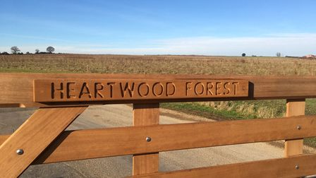 The car was targeted at Heartwood Forest in Sandridge.