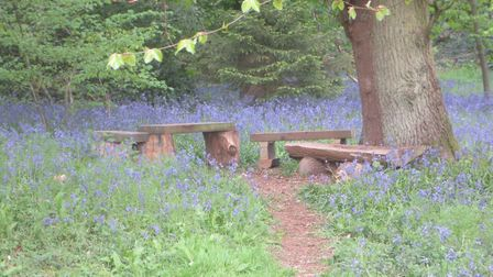 Volunteers used reclaimed wood to create a new seating area in Batchwood. Picture: Miles Soppet