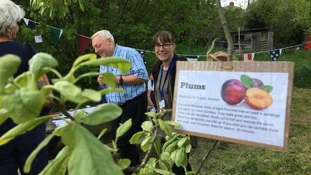 Michelle Mackenzie is a tour guide for the Cottonmill Allotments Open Day. Picture: Submitted by Sus